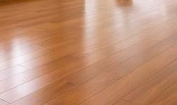 木地板发展趋势:绿色可持续发展