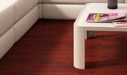 """实木地暖地板将成为地板行业的""""蓝海"""""""
