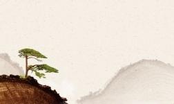 从新中式到唐之韵,三层实木地板打造中式会呼吸生活