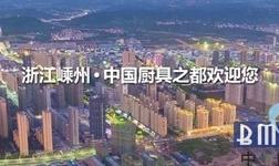双向发力接轨国际市场――第十一届电机•厨具展在浙江嵊州举行