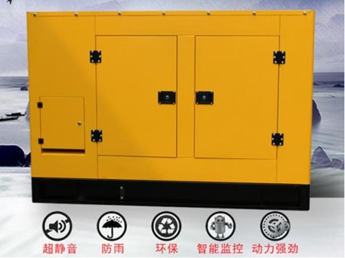萝卜青菜各有所爱,雅动用订制发电机使客户各取所需