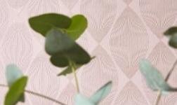 艾仕壁纸:壁纸图案之行走中的流行家居