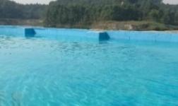 水上樂園專業泳池漆PK傳統油漆涂料