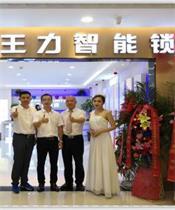 230平�O�D�D王力智能锁全国超大专卖店郑州居然之家旗舰总店隆重开业