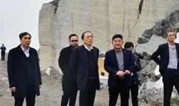 中國煤炭地質總局領導到廣西忻城考察石材產業