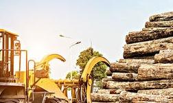木材工業節能降耗與生產安全控制技術會議召開