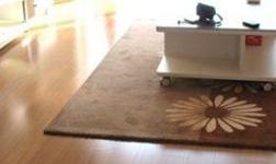 實木與復合地板對比及搭配原則