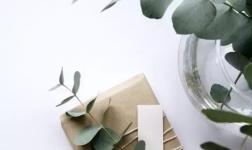 大自然木门:这款天然木皮,让新中式木门美出新高度!