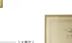 """3D无漆木门2019开年获得""""木门十佳品牌""""等诸多大奖!"""