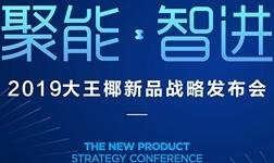 盘点大王椰新品发布会,营销升级联动全国!