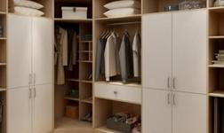 品牌整体衣柜设计 下一个爆款肯定是它!