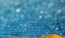 我国净水器行业|注重产品质量售后服务品牌宣传