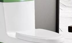 蘇仕的衛浴 | 坐便器和蹲便器的優缺點