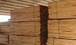 國外木材貨源緊縮 或將推動國內木材價格上漲