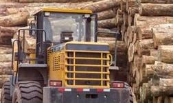 木质地板 它是如何制造的呢?