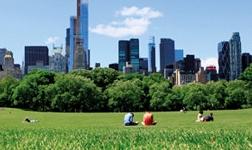 洛科威中国推动建设绿色家园