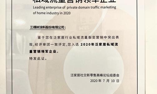 """營銷新探索丨三棵樹獲""""2020年私域流量營銷領軍企業"""""""