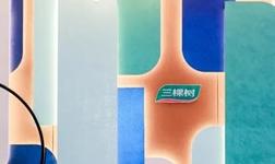 三棵樹亮相2020中國國際涂料博覽會并獲3項大獎