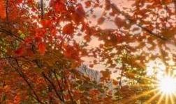 京西觀雲臺|你向往的康養半山別院