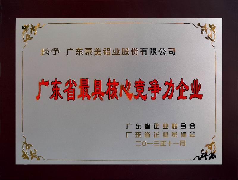 广东省核心竞争力企业