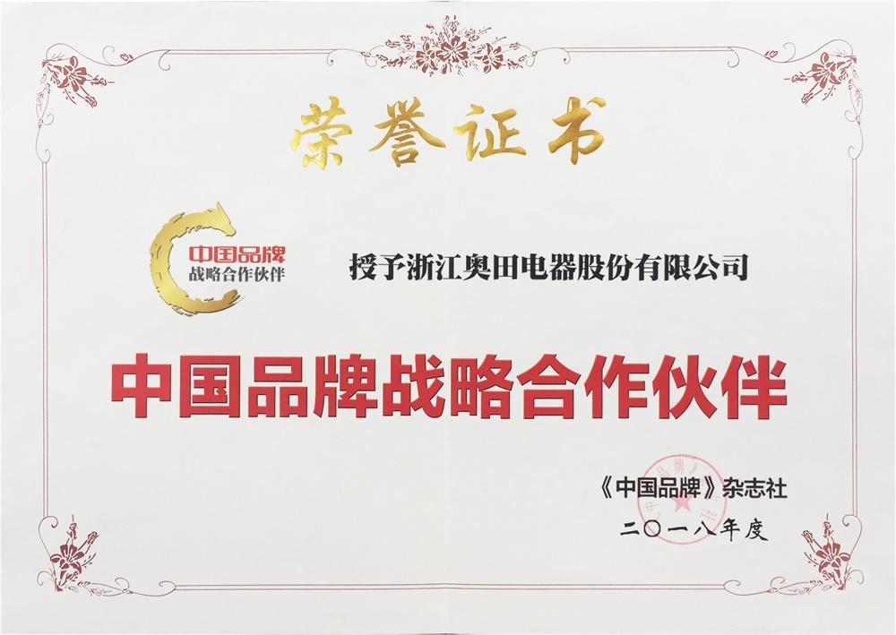 中国品牌战略合作伙伴