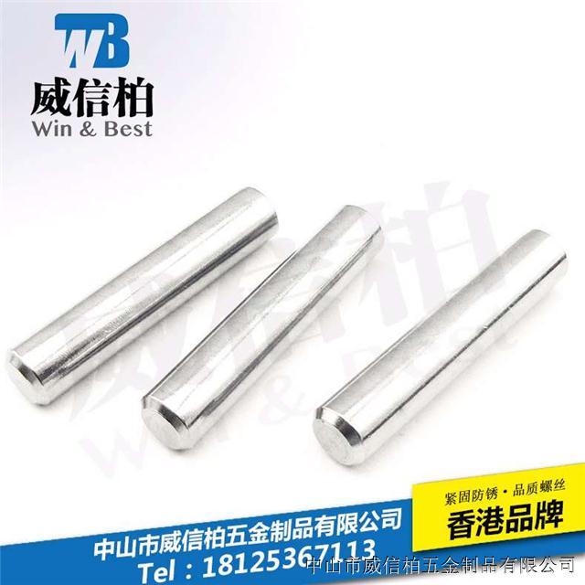 供应304不锈钢直支螺丝/可定制尺寸销钉