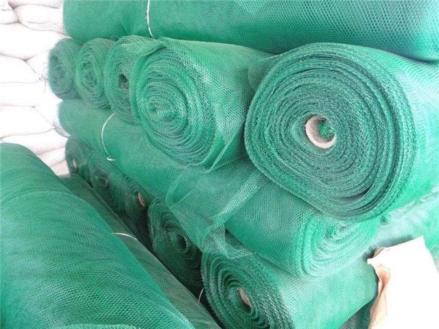 三维植被网边坡绿化环保节能