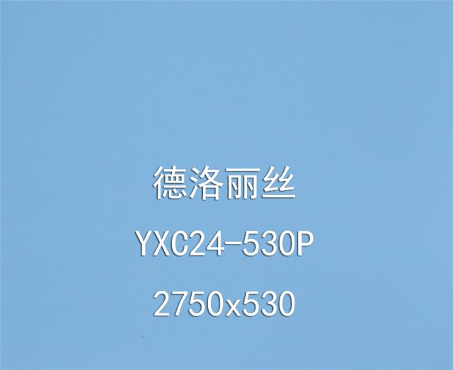 丽尚印象色彩秀(德洛丽丝YXC24-530P)