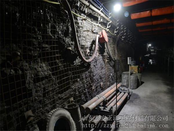 内乡县双向拉伸塑料土工格栅多少钱一平方