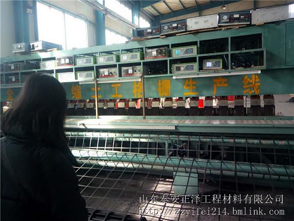 肇庆钢塑格栅生产基地规格全价格低信誉好