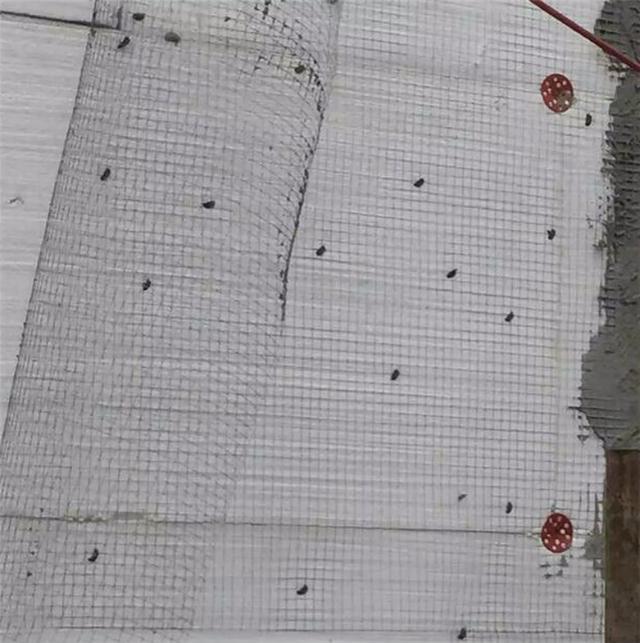 新闻:阿拉善盟砂浆复合板型号 机电之家网
