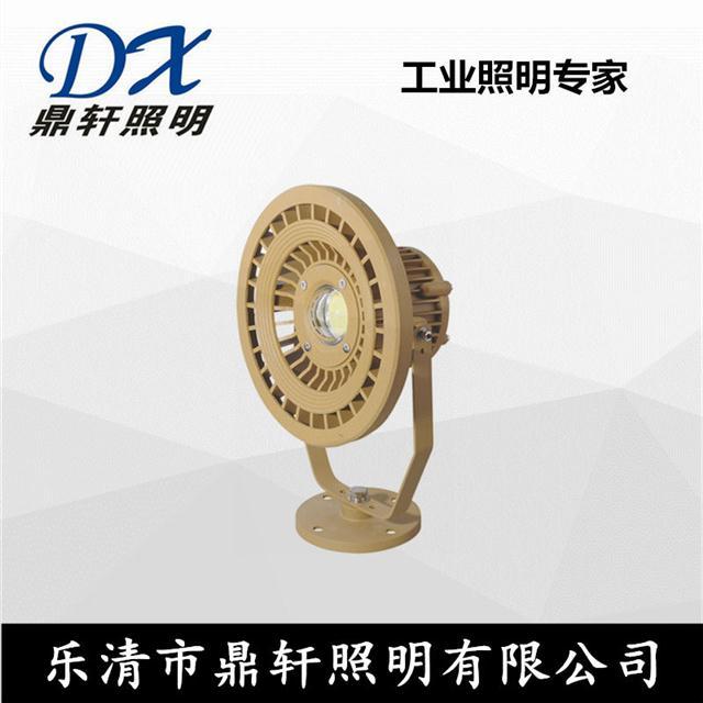 生產廠家RWX8202免維護防爆投光燈