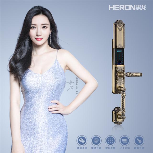 黑龙 HERON微信指纹锁 A802系列