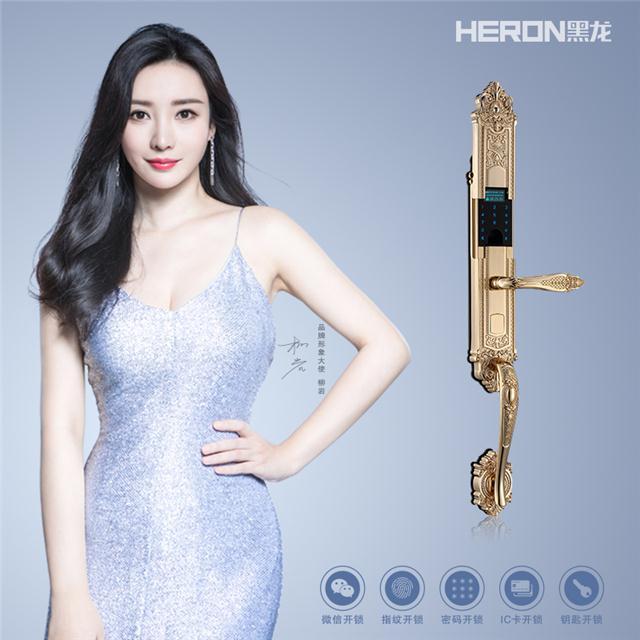 黑龙 HERON微信指纹锁 A801系列