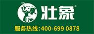 廣西壯象木業