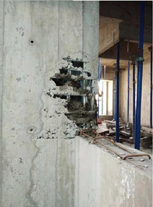"""洛科威中国参加""""中国好房子之建筑外墙整体解决方案发展趋势""""线上沙龙"""