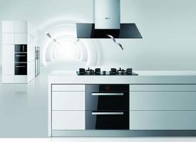 中国厨卫电器十大牌 中国厨卫电器十大名牌产品