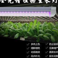 威尔康 led植物灯 植物生长补光灯 水培育苗补光灯0.6-1.2米可选