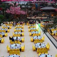 四川连栋玻璃生态采摘观光园餐厅温室大棚造价
