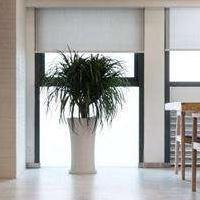 居乐高装饰昆明办公室这样装修才能让人有家的舒适惬意