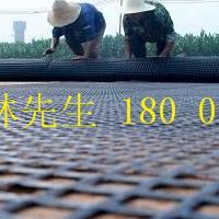 广西公路铁路水利软土地基增强加筋经编玻纤条轮土工格栅销售