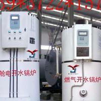 莱阳临朐嘉祥临邑县渔洋中学用燃气J12C双卫电开水炉