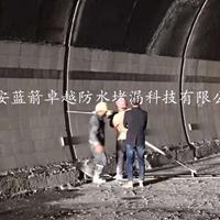 汉中防水堵漏公司_专业找蓝箭卓越防水堵漏_官网