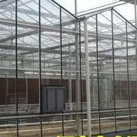 甘肃玻璃智能温室大棚安装 山西日光几型钢材料大棚骨架