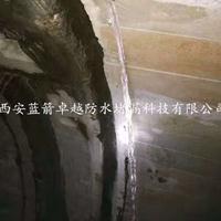 西安隧道堵漏-西安化学灌浆堵漏材料-西安蓝箭卓越防水堵漏公司
