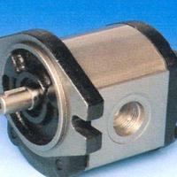 大批量现货供应意大利马祖奇齿轮泵ALP2A-D-40-FG-V