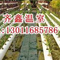 无土栽培|灌溉系统|内外遮阳|移动苗床|风机水帘厂家直供