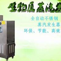 旭恩无烟煤50KG生物质颗粒蒸汽发生器价格