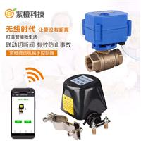 wifi无线电动阀控制器 智能化灌溉浇花 手机远程遥控定时开关