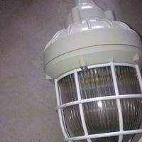 BAX防爆照明灯额定电压220V 40W